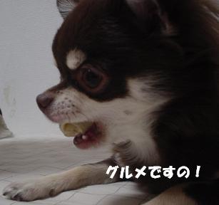 DSC04846.JPG
