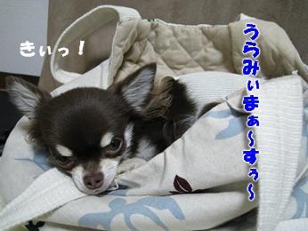 IMG_0726.JPG