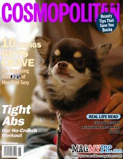 magazine1_sm.jpg
