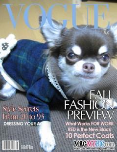 magazine2_sm.jpg