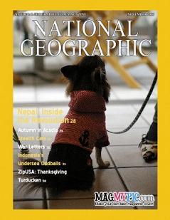 magazine3_sm.jpg