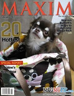 magazine5_sm.jpg